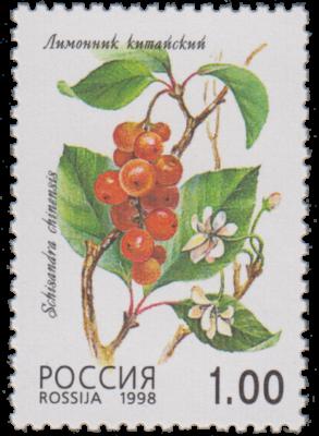 schisandra francobollo russia