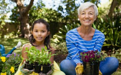 Antiparassitari naturali per piante: consigli e suggerimenti