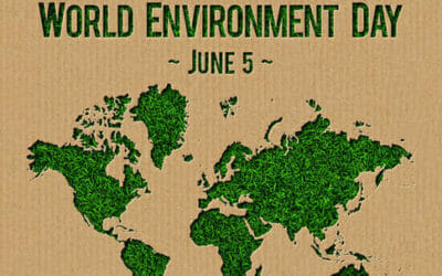 La giornata mondiale dell'ambiente è il 5 giugno di ogni anno: riflettori puntati su biodiversità e sostenibilità