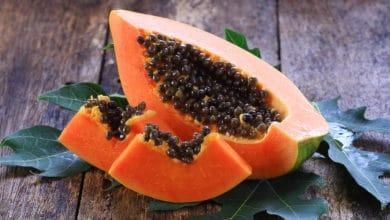 Photo of Papaya, benefici e controindicazioni: tutte le proprietà da conoscere