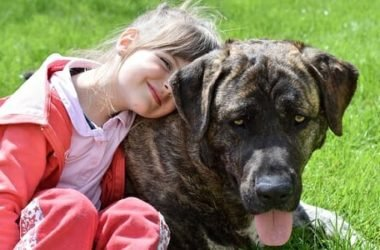 Le migliori razze di cani per bambini: sai quali sono?