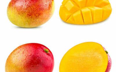 Tutte le proprietà del mango con anche tante ricette e le istruzioni per tagliarlo facilmente