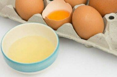 Albume, scopriamo le proprietà nutrizionali e gli utilizzi della chiara dl'uovo
