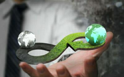 Economia circolare, che cos'è e come potrà creare nuove opportunità di lavoro