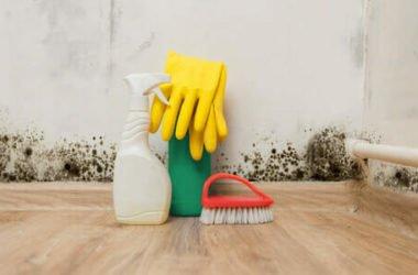 Tutte le soluzioni per combattere l'umidità in casa, dalla misurazione ai rimedi naturali