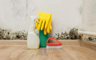 Umidità in casa: come misurarla, prevenirla ed eliminarla - Tuttogreen