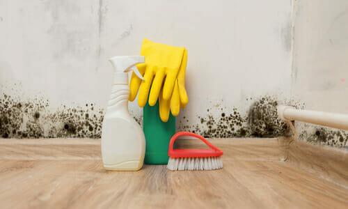 Umidit in casa come misurarla prevenirla ed eliminarla - Umidita ideale in casa ...