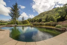 Photo of Biopiscine: arriva la piscina naturale che non contiene cloro