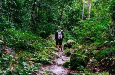 Guida al trekking: per riscoprire un turismo tranquillo nella natura ricco di benefici per corpo e mente
