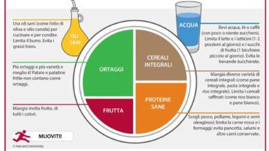 Photo of Da Harvard il piatto del mangiare sano, un metodo empirico molto semplice per mangiare meglio