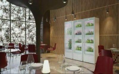 Arriva MiobiO, la serra indoor per coltivare piante ed erbe senza fatica