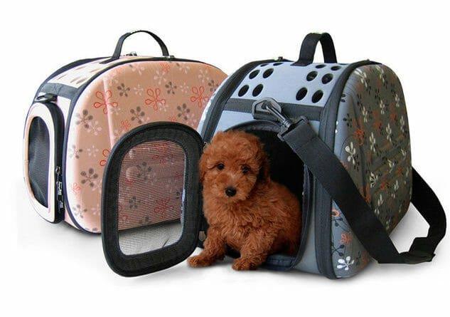 Photo of Tutto sul trasportino per il tuo cane, pro e contro e tanti modelli recensiti con prezzi ed offerte