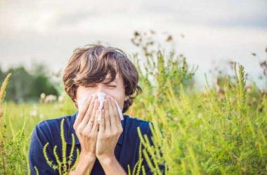 Cure e rimedi naturali per prevenire ed alleviare i sintomi dell'allergia