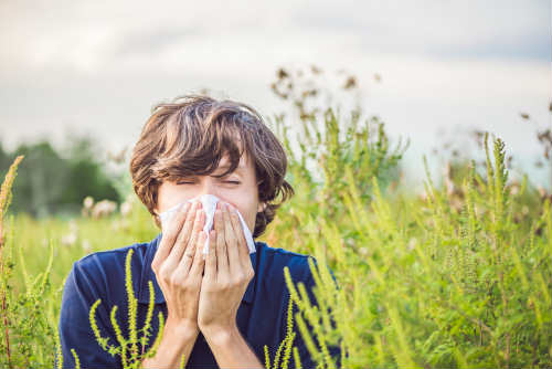 Photo of Cure e rimedi naturali per prevenire ed alleviare i sintomi dell'allergia