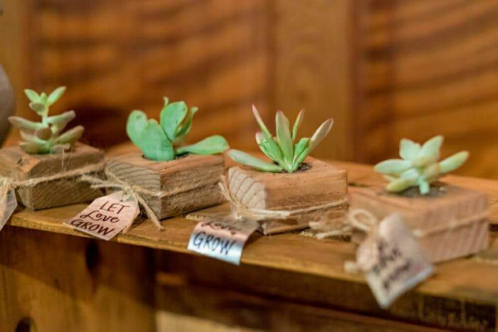 Photo of Le bomboniere ecologiche per un matrimonio davvero green: la guida pratica