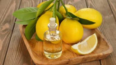 Photo of Il modi migliori per usare l'olio essenziale di limone, un prodotto davvero ricco di risorse