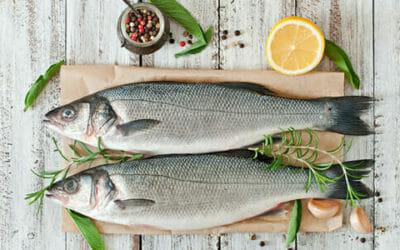 Pesce, tutto quello che dovete sapere su questo alimento fondamentale per una dieta equilibrata