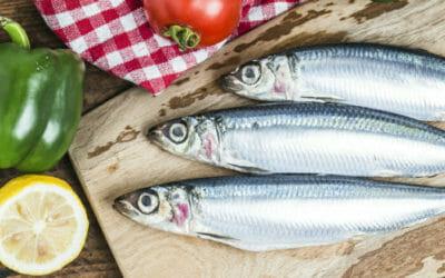 Il pesce azzurro fa davvero bene? Ecco quali sono le specie da conoscere.