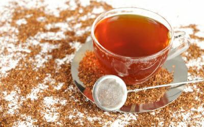 Honeybush: un infuso dal Sudafrica che vanta diverse proprietà interessanti