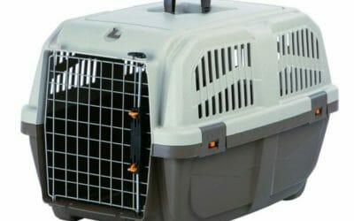 Tutto sul trasportino per il tuo cane, pro e contro e tanti modelli recensiti con prezzi ed offerte