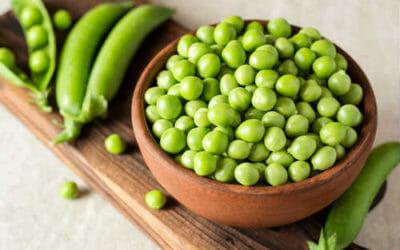 Come cucinare le fave, proprietà, controindicazioni, benefici e ricette consigliate