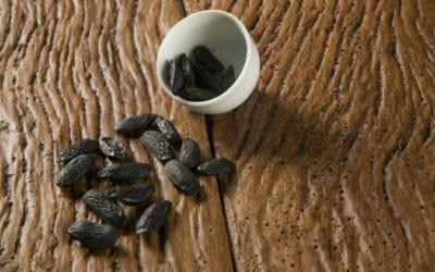 Fava Tonka: il seme cumaru, utilizzo e proprietà