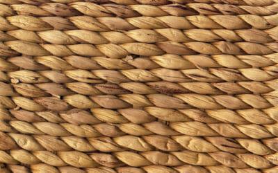 Tutto quello che c'è da sapere sulla rafia, una fibra naturale dai molti utilizzi