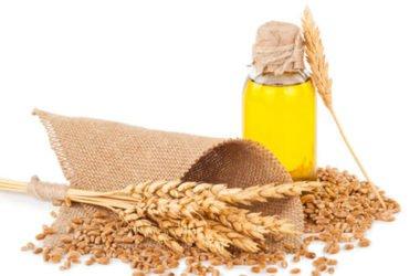 Olio di germe di grano: proprietà e utilizzi in cosmetica ed in cucina