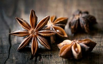 Tutto sull'anice stellato: un antibiotico naturale dai mille usi in cucina