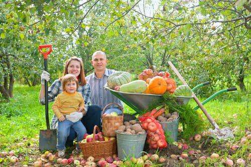 Photo of Cos'è l'agricoltura rigenerativa? Quali sono i suoi vantaggi?