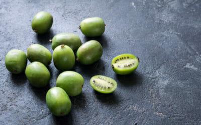 Nergi, il nuovo superfood è come un baby kiwi, dolcissimo e ricco di vitamine