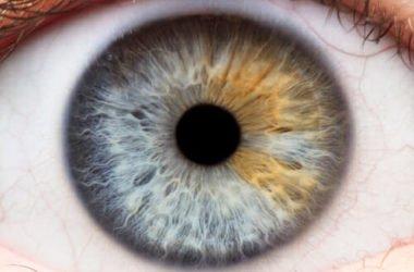 Quello che c'è da sapere sull'iridologia: gli occhi come specchio della salute, oltre che dell'anima