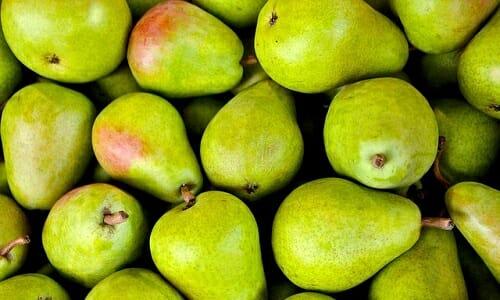 Tutte le varietà di pera e le loro proprietà: quello che devi sapere su un frutto da conoscere assolutamente
