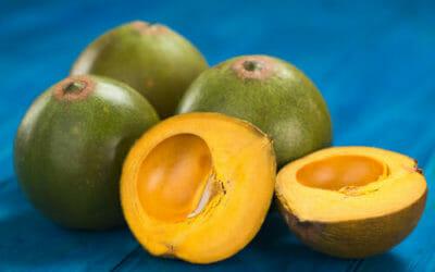 Tutto sulla lucuma, un frutto esotico proveniente dal Perù