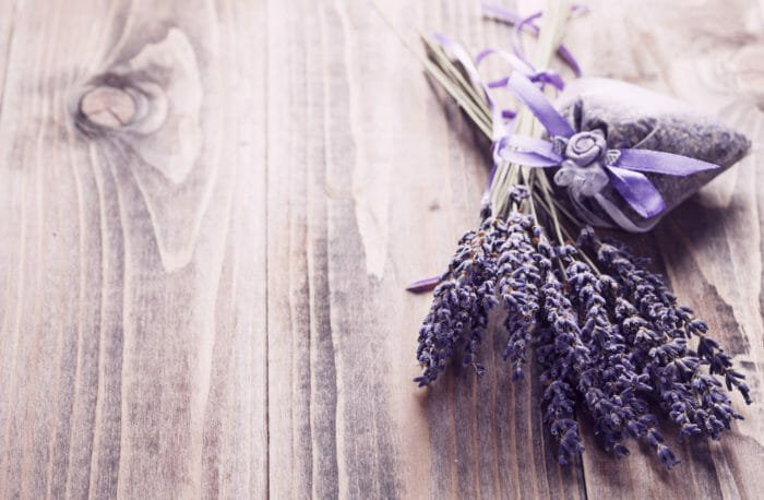 fiori secchi lavanda