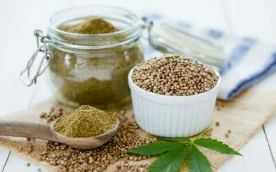 Farina di canapa: proprietà e utilizzi della farina gluten-free