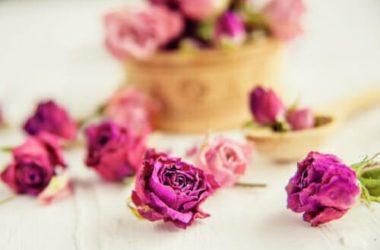 Come utilizzare i fiori secchi per decorare e profumare la casa: le tecniche da conoscere
