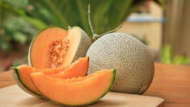 Photo of I segreti del melone: rinfrescante, salutare e facile da servire in tante ricette estive