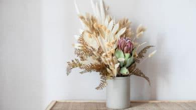 Photo of Come utilizzare i fiori secchi per decorare e profumare la casa: le tecniche da conoscere