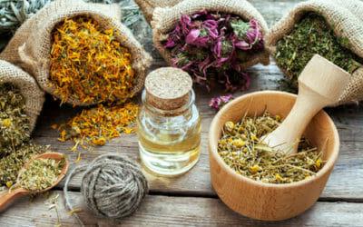 Scopriamo l'olio 31, un prodotto naturale ricavato dalla miscela di 31 erbe officinali