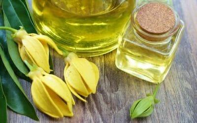 La guida all'olio di ylang ylang: proprietà, utilizzi e ricette, non solo per la bellezza