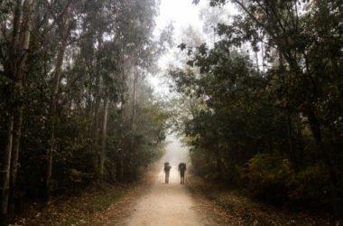 Cammino di Santiago de Compostela, un percorso non solo spirituale