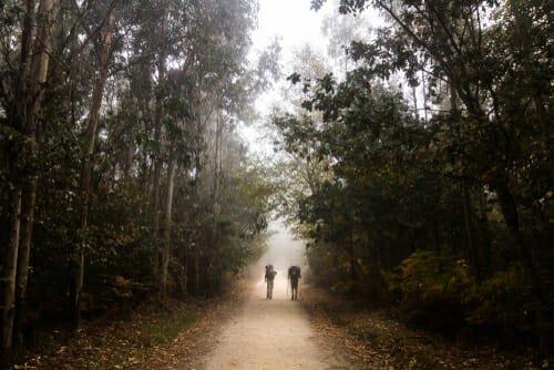 Photo of Cammino di Santiago de Compostela, un percorso non solo spirituale
