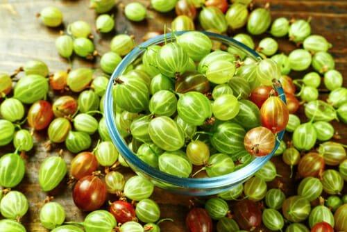 Photo of Tutto sull'uva spina, un frutto antiossidante dalle diverse proprietà benefiche