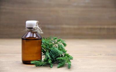 Proprietà e utilizzi dell'olio essenziale di ginepro