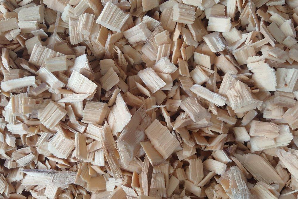 Photo of La cellulosa deriva dal legno ed è usata per fare carta, abiti, mobili, cibi e addirittura come biocarburante: conosciamola meglio
