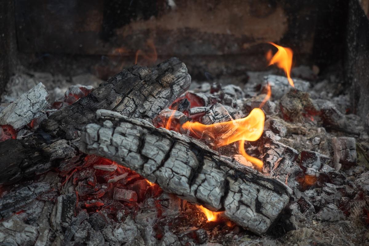 Cenere Di Pellet Nell Orto cenere: tutti i modi per riutilizzarla prima del suo smaltimento