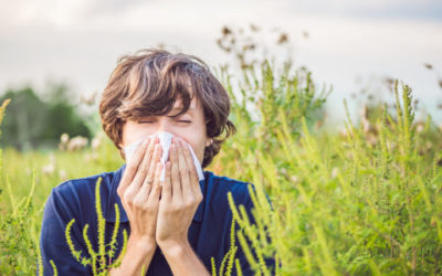 Cosa causa l'allergia alle graminacee, come si manifesta e quali sono le cure ed i rimedi naturali