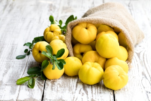 Mela cotogna: riscopriamo questo frutto antico dalle mille virtù
