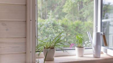 Photo of Come pulire le zanzariere efficacemente e con prodotti casalinghi